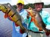 8-peacock-bass-fishing-brazil1